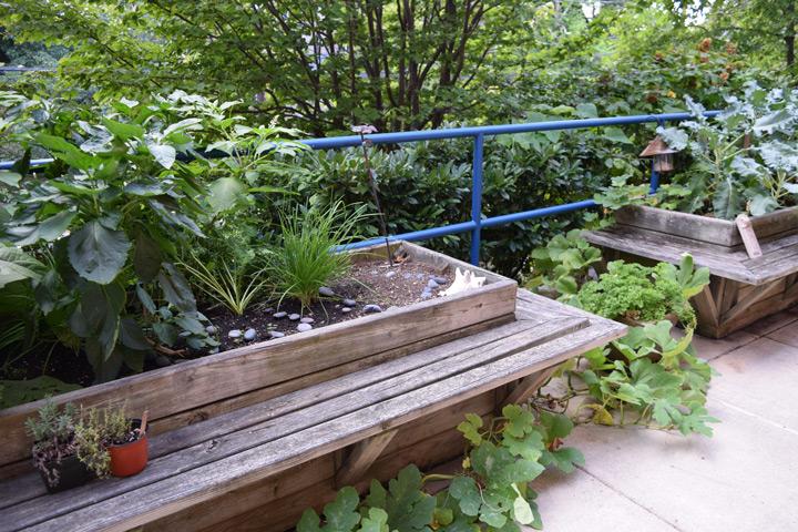 Wellness-Garden (1)